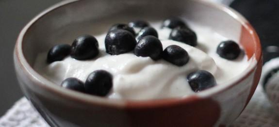 Frozen Joghurt mit Stevia