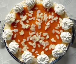 Orangen-Quark-Torte mit Stevia
